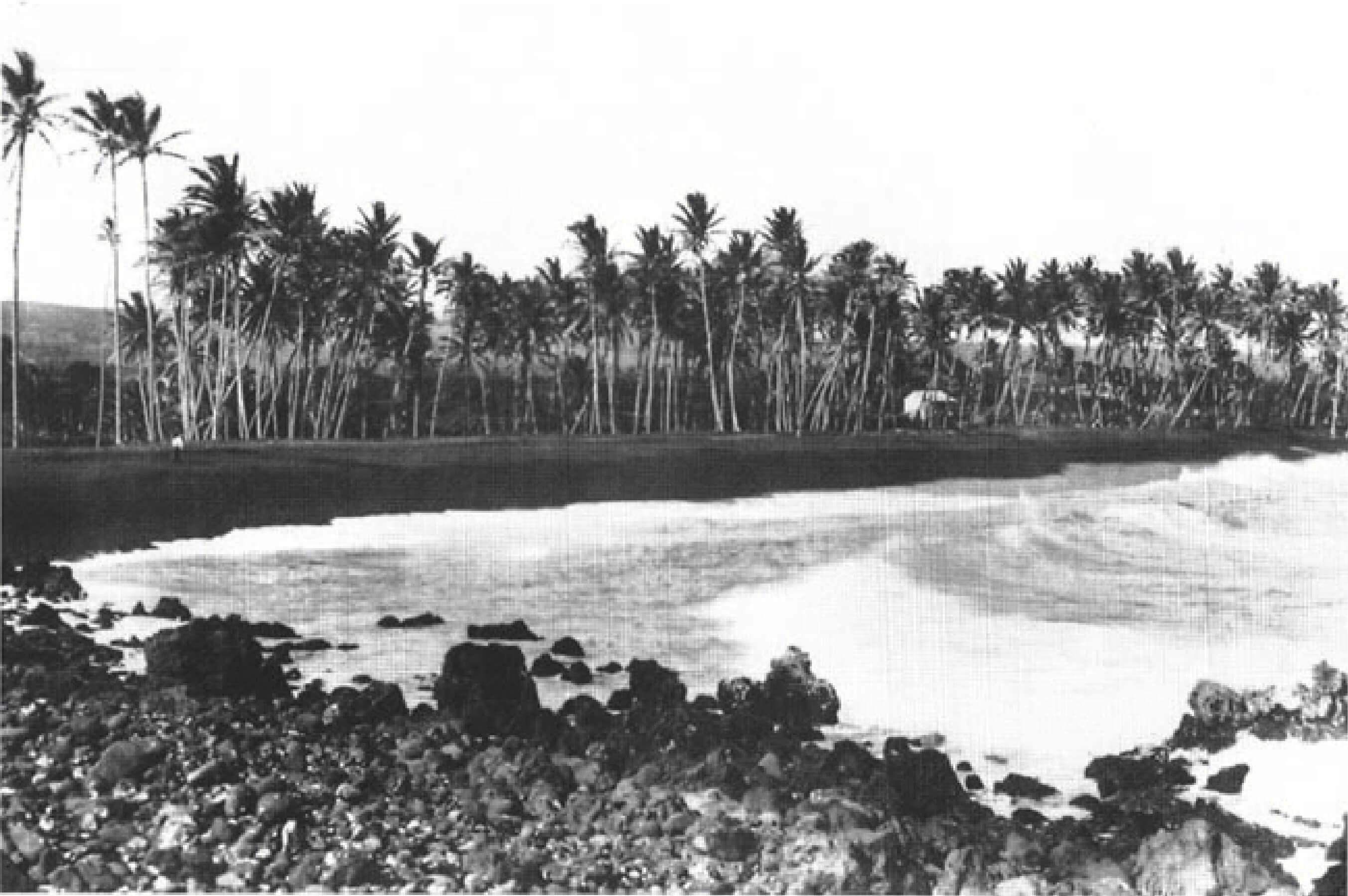 Hawaii Early 1900s