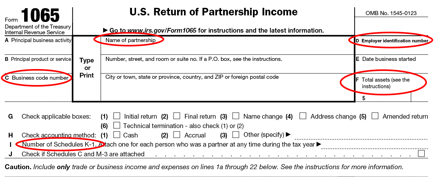 Form 1065 Instructions Information For Partnership Tax Returns
